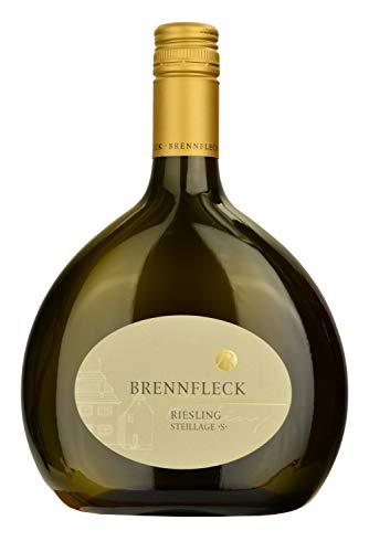 Brennfleck 2018 Riesling Spätlese/Steillage -S- Trocken, Weißwein (1 x 0.75l) Frankenwein
