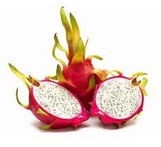 Fresh Dragon Fruit Set of 6