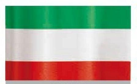 ROTOLO NASTRO PVC ITALIA H 31 CENTIMETRI METRI 100