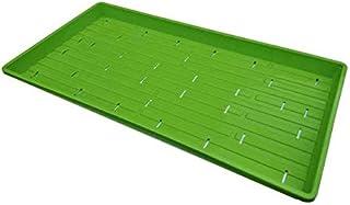 Microgreen Trays, Green 30 Pack, No Holes