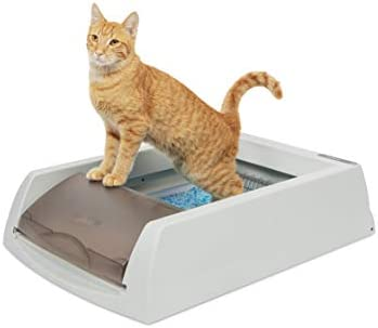 PetSafe ScoopFree Automatic Self-Cleaning Cat Litter Box - Original Purple or Taupe - 2nd Generation - Includes Disposable Tray with Premium Blue Crystal Litter