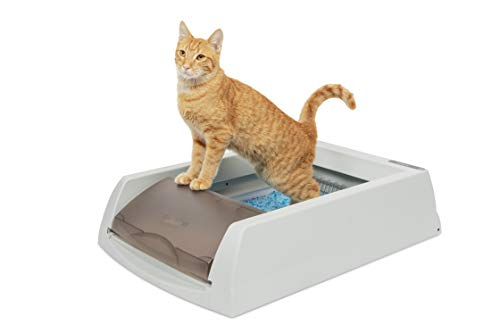 PetSafe ScoopFree Original Self-Cleaning Cat Litter Box - Automatic with Disposable Tray and Non-Clumping Crystal Litter - Taupe