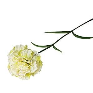 Artificial Carnation Flowers – Vintage Silk Carnation Bouquet Plastic Decoration Realistic Flower Arrangements, Gift for Mother's Day (B)