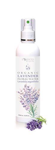 BIO-Lavendelwasser (Lavandula angustifolia) 100% naturrein (250ml) Lavendel-Blütenwasser, Spitzenqualität aus dem eigenen Familienbetrieb, Spray als Gesichtswasser, Haarwasser, Tagespflege 250ml