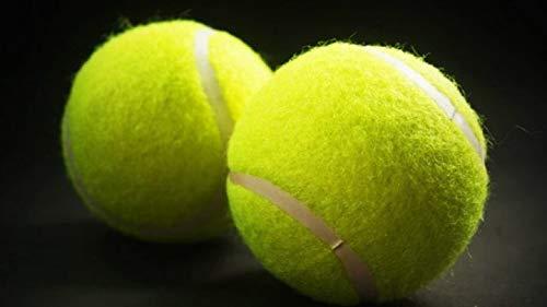 Sanders Rio - Pelotas de tenis para jugar al críquet (2