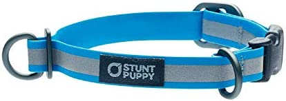 Stunt Puppy Go Dog Glo Dry Collar Small Ocean 3 4 Inch product image