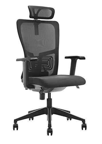 DeckUp Zeus High Back Executive Mesh Office Chair (Black, BIFMA Certified, 3 Years Warranty)