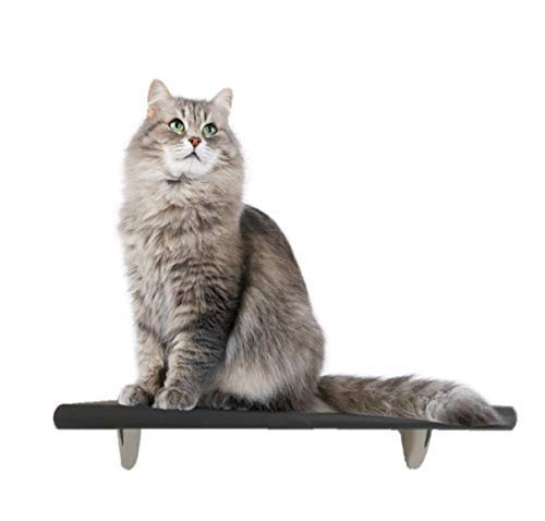 """Contempo List price Cat Shelf Houston Mall for Wall Mounted Climbing 18"""" - Tre"""