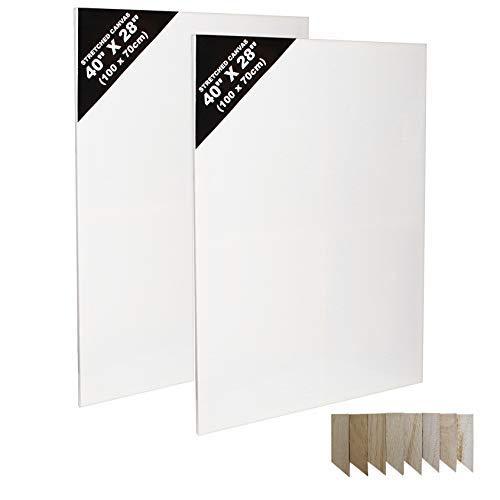 Lienzos (2 Pcs) - (100cm x 70cm) 40x28 inch Paneles de Lienzos Artes para Pintura - Lienzos Grandes con Cuñas de Madera - Lienzo en Blanco para Obras de Arte - Lienzos Pre Estirados