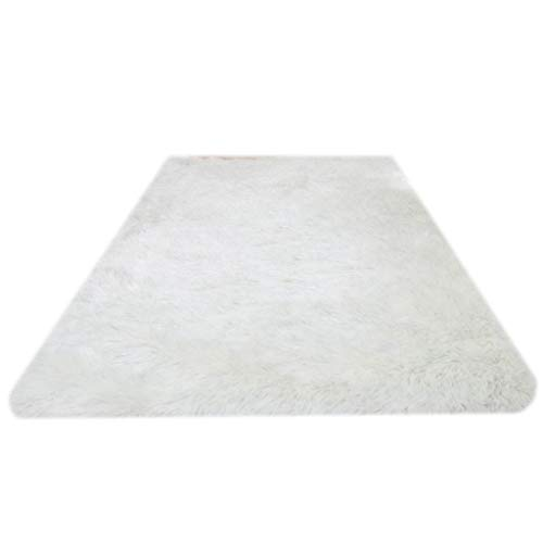 Amazing Deal CarPet Soft Non-Slip Rugs Fluffy Indoor Rug Ideal as a Runner for hallways and Foot of ...