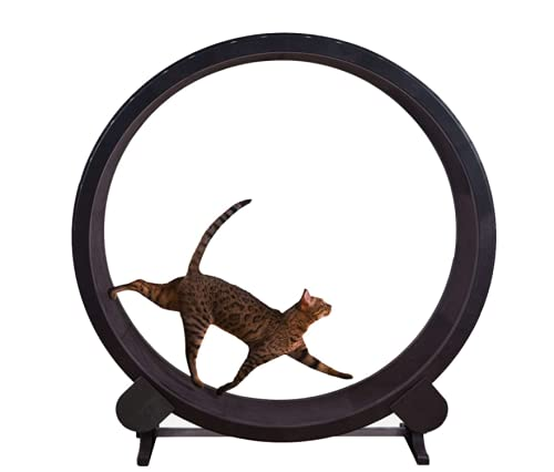 Dog Treadmill, Pet cat Climbing Frame, Cat Exercise Wheel Pet Running Machine Silent cat Treadmill, Smooth Run Freely for Small/Medium-Sized Dogs Indoor Exercise