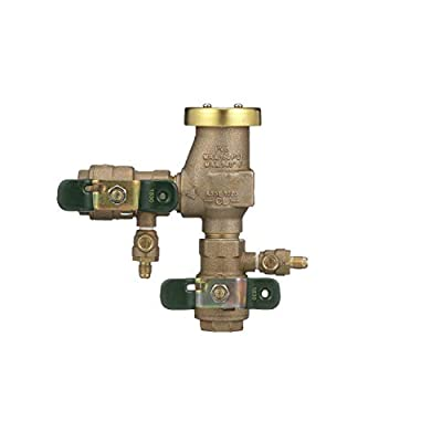 """Watts 0388001 Pressure Vacuum Breaker with QT Turn Ball Valves, 3/4"""" by Park Supply of America"""