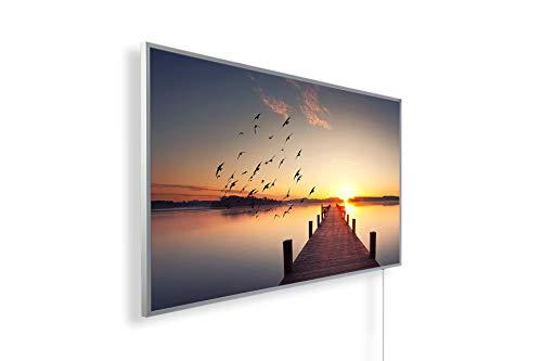 Könighaus Fern Infrarotheizung - Bildheizung in HD Qualität mit TÜV/GS - 200+ Bilder – mit Könighaus Smart Thermostat und APP für IOS/Android - 1000 Watt (2. Steg Vögel)