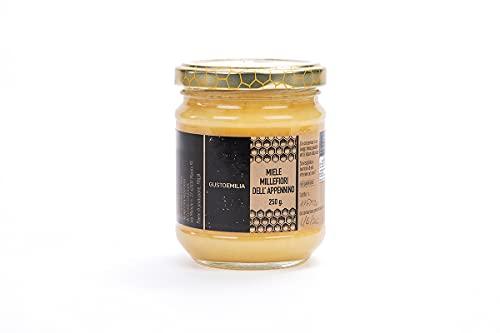 Miele Biologico Italiano di Montagna   Millefiori  100% Naturale, Artigianale e Puro, Non Pastorizzato   Gustoemilia (Millefiori, 250gr)