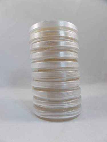 Forest Organics 20 Malt Extract Agar 100 X 15mm Sterilized Petri Dish (MYA)