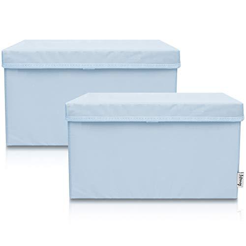 Lifeney 2-Set Aufbewahrungsbox Kinder (37x25x21cm) I Aufbewahrungskorb für Kinderzimmer und Wohnbereich I Kinder Aufbewahrungskiste (Hellblau)