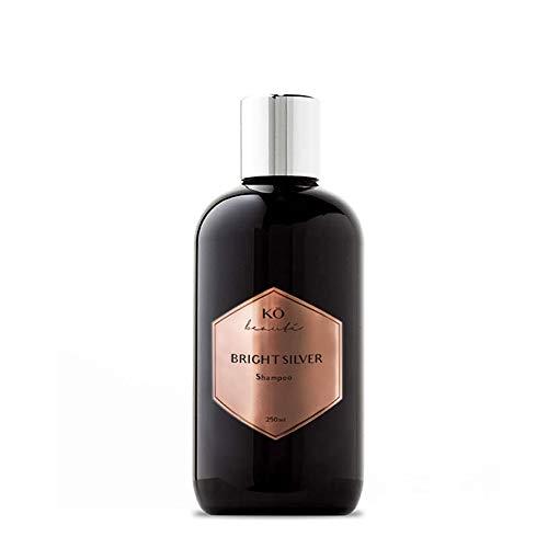 Silber-Glanz-Shampoo Anti-Gelbstich 250 ml, ausgleichende lila Farbpigmente für blondes blondiertes und graues Haar, Geschmeidigkeit und Volumen
