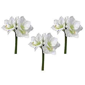 Floral Kingdom Real Touch 30′ XLarge Artificial Amaryllis Flowers for vase Arrangements, Home/Office Decor (Pack of 3)