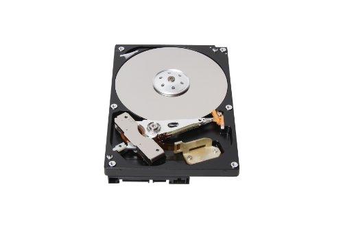 Toshiba DT01ACA050 interne Festplatte 500GB (7200rpm, 6000, SATA)