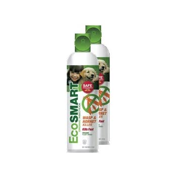 EcoSmart Wasp & Hornet Killer 14 oz. Aerosol (2 Pack)