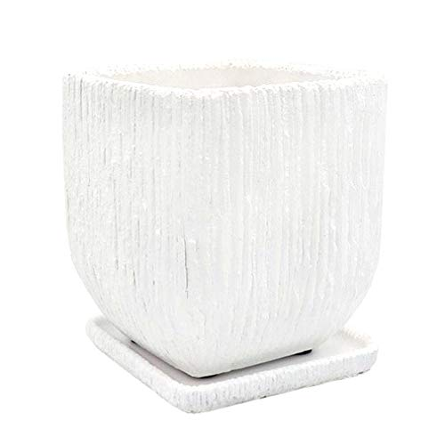 XIAKE Maceta de hormigón para plantas y flores, decoración con platillo, 18 x 18 x 20 cm, color blanco