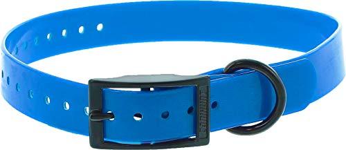 Collar Perro Azul poliuretano 60cm hebilla doble, gravable (ver las detalles)