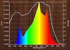 Spider Series 500 - Lampe Horticole LED ultra-puissante - 8 barres LED - 100cm x 100cm