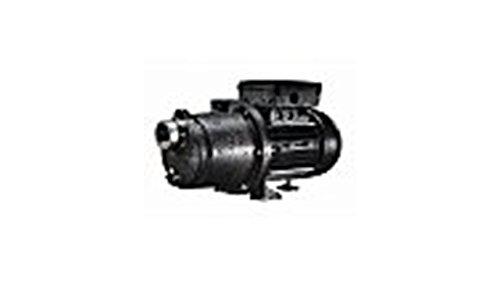 1.1HP 115/230V EE BOOST-RITE BOOSTER PUMP