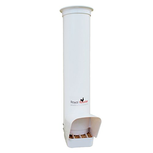 Royal Rooster Chicken Poultry Feeder with Rain Cover