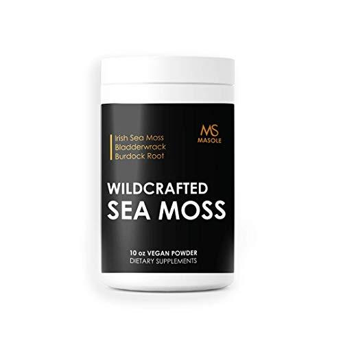 Premium High Absorption Wildcrafted Sea Moss Powder | 3200mg of Organic Irish Sea Moss, Bladderwrack, & Burdock Root per Serving | 10 Ounces | Vegan – Non-GMO - Masole Labs by Sincere Supplements