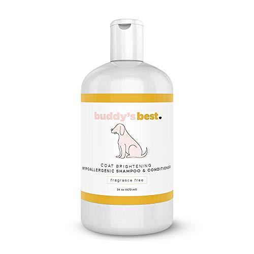 Buddy Wash Dog Shampoo