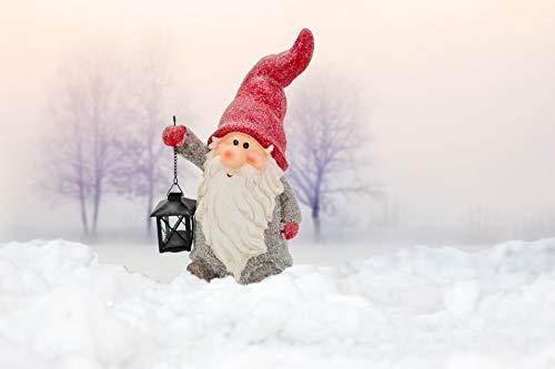 ABC Home Garden Weihnachtsfigur Gnom mit Laterne Weihnachtsdeko Weihnachten/Winter, Magnesiumoxid, Metall, Glas, mehrfarbig, ca. 14,5 cm T x 28,5 cm B x 39 cm H, 50967