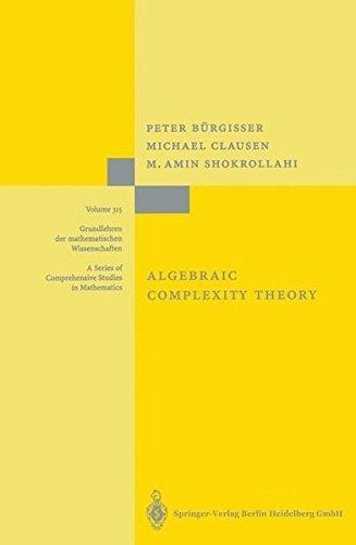 Algebraic Complexity Theory (Grundlehren der mathematischen Wissenschaften Book 315) (English Edition)