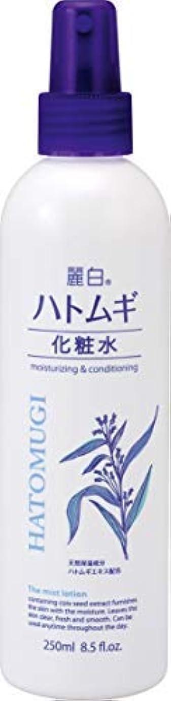 家パイプ接続麗白 ハトムギ 化粧水 ミストタイプ × 4個セット