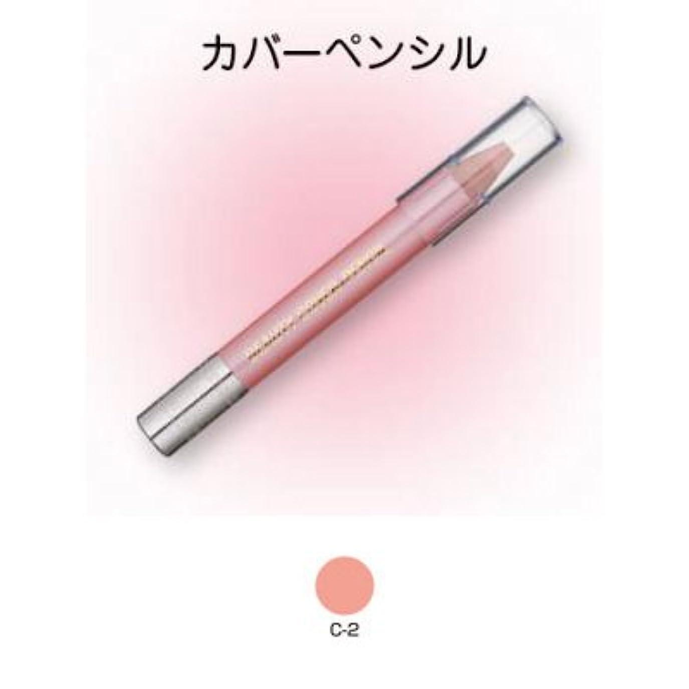 コントラストゼロ現在ビューティーカバーペンシル C-2【三善】