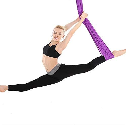 Columpio de yoga Hamaca de yoga aérea Sedas aéreas de primera calidad Trapecio de yoga antigravedad, Pilates de inversión, Cadena de margaritas Uso en interiores ( Color : Purple , Size : 4*2.8M )