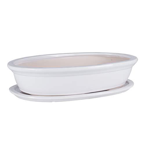 botle Cuenco para bonsai con forma de árbol, para jardín, cerámica, maceta, maceta, maceta, plato para flores, color blanco, 6 tamaños (19)