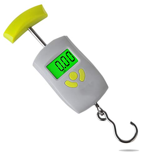 Mini balanza portátil Balanza electrónica Portátil Balanza de Resorte Alta precisión Pequeña Mano Peso 50 kg (Color : Gray)
