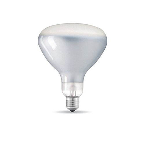 Lampadina LED E27 R125 8W 230V 2700K 750 lm Dimmerabile Frosted per Flos Parentesi