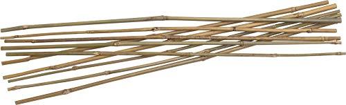 Tonkinstäbe Bambusstäbe Pflanzstäbe Rankhilfe Ø 6-8 mm x 60 cm (10 Stück)