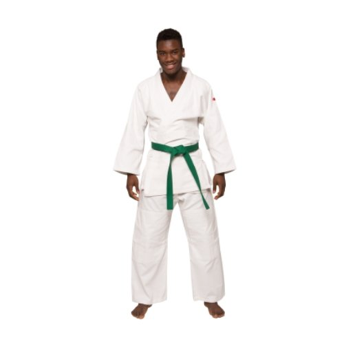 BeMartial Regular karategi Mixte Adulte Regular Adulte Mixte