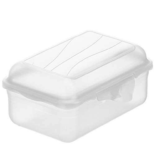Rotho Fun Vesperdose 0,4l mit Klickverschluss, Kunststoff (PP) BPA-frei, transparent, 0,4l (12,5 x 9,0 x 5,8 cm)