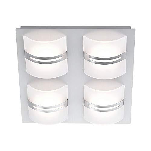 Paul Neuhaus 6435-95 Klara LED Deckenleuchte + Stufen-Dimmer 4x 4W 3000K