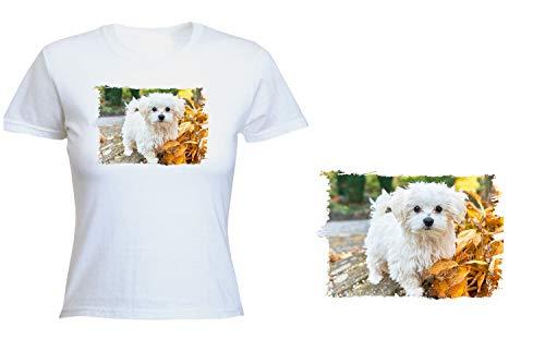MERCHANDMANIA Camiseta Mujer Perro Raza Bichon MALTES Tshirt