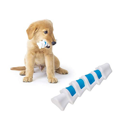 EETOYS Puppy Teething Toys Dog Chew Toys for Gentle Chewers Promotes Dental Health Reduces Teething Discomfort Boredom Freshen Breath Dog Toy Made W/PU Rubber (Spare Ribs, Medium)