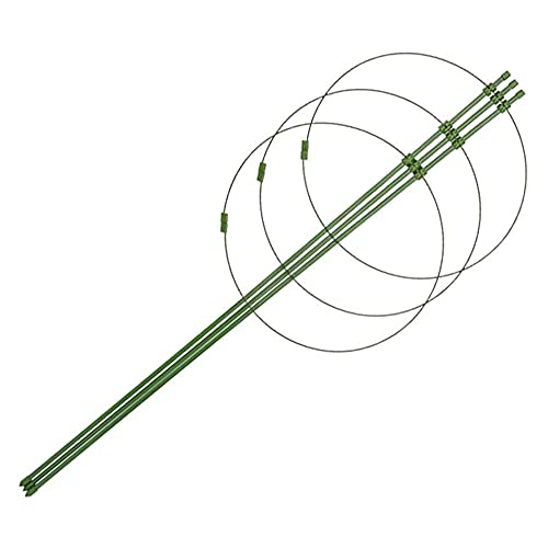 Anillo de Soporte para Plantas Enrejados Ajustables para Plantas Planta trepadora Fija Soporte para Plantas Estante para trepar, Paquete de Tubo metálico Plástico
