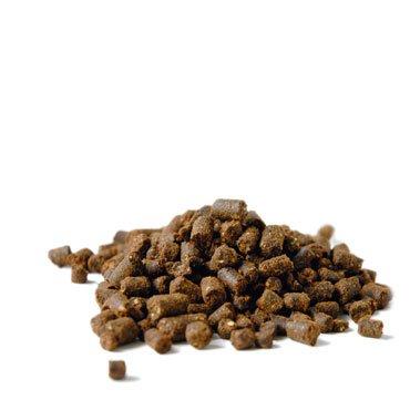 fair-natur Neembaum-Pellets 1kg Neempresskuchen (13,99€/kg)