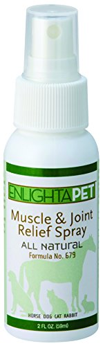 JADIENCE Dog, Cat, Horse Sore Muscle Pain Relief Spray: 2oz | Hip & Joint Care Healing Medicine | Natural Treatment to Soothe & Support | Herbal Relaxer for Old & Young Animals | EnlightAPet