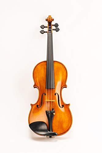 D Z Strad Model 220 4/4 Full Size Violin with Dominant strings, bow, case, rosin and shoulder rest-Open Clear Tone