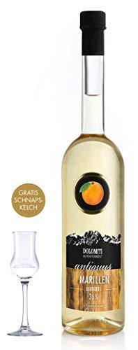 DOLOMITI Antiquus Alte Marille aus dem Barrique-Fass │ mit Gratis Schnapskelch/Marillen Premium Spirituose 36% vol. │ fruchtiger, angenehm milder Marillen-Schnaps (0.7 L)